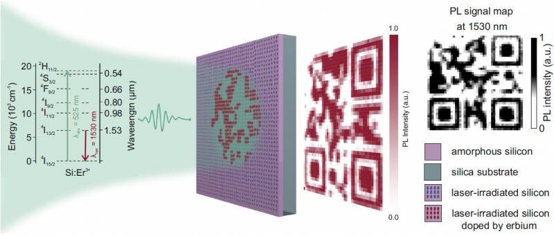 Защитная метка для маркировки товаров. Иллюстрация из статьи. Источник: onlinelibrary.wiley.com