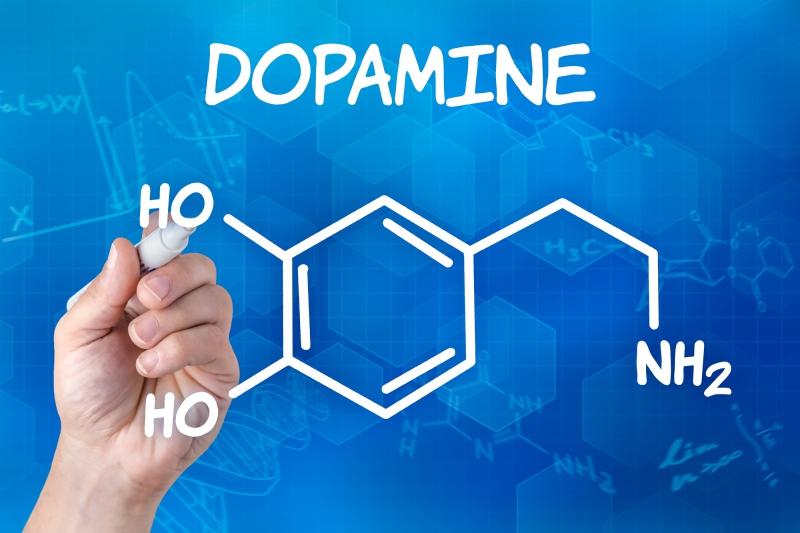 Нейромедиатор дофамин. Источник: depositphotos.com