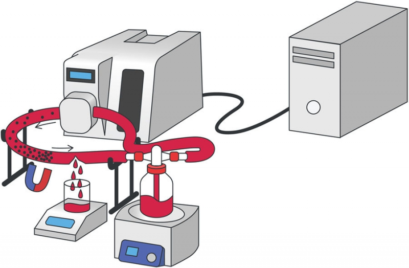 A system simulating the conditions of a damaged blood vessel