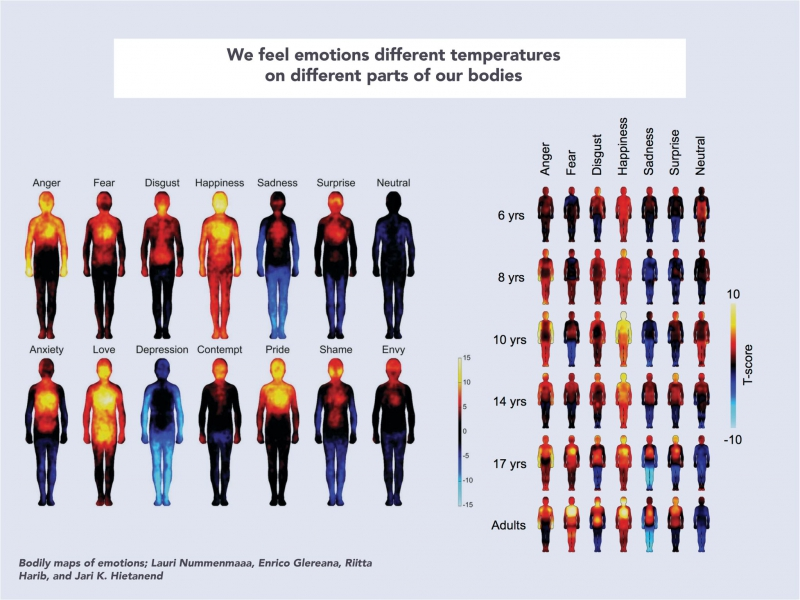 Temperatures displayed by human bodies due to various emotions Credit: augmentation.media.mit.edu