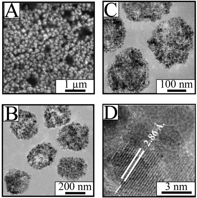 The developed nanospheres at different scales