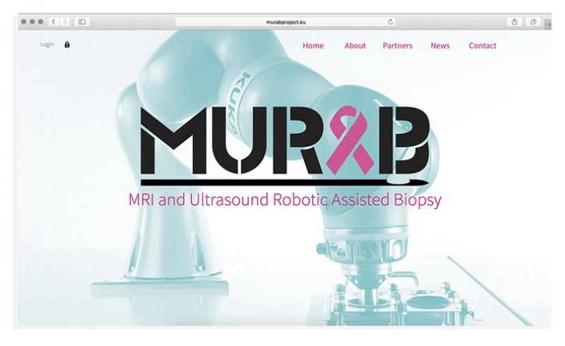 Проект MURAB. Источник: ram.ewi.utwente.nl