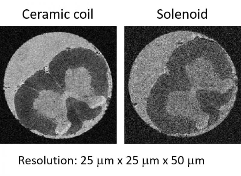 Сравнение микроскопического изображения спинного мозга крысы (показано поперечное сечение), сделанное на томографе 17 Тл с использованием предложенного керамического зонда и стандартного зонда в виде соленоида