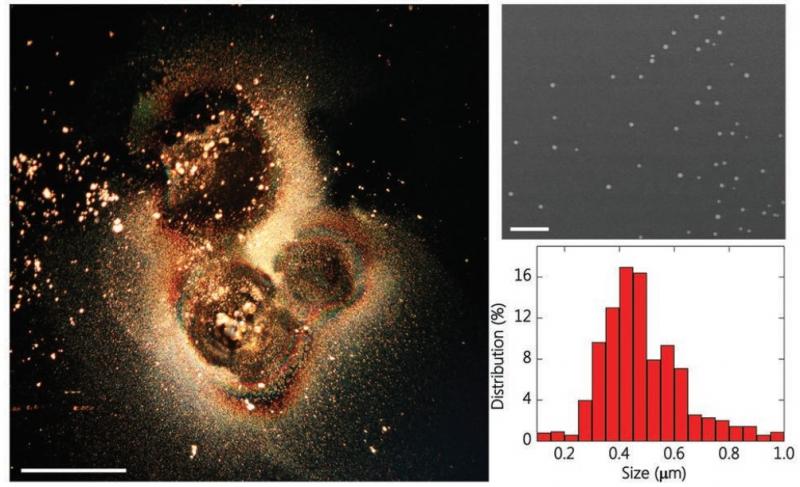 Полученные из метал-органических каркасов наночастицы