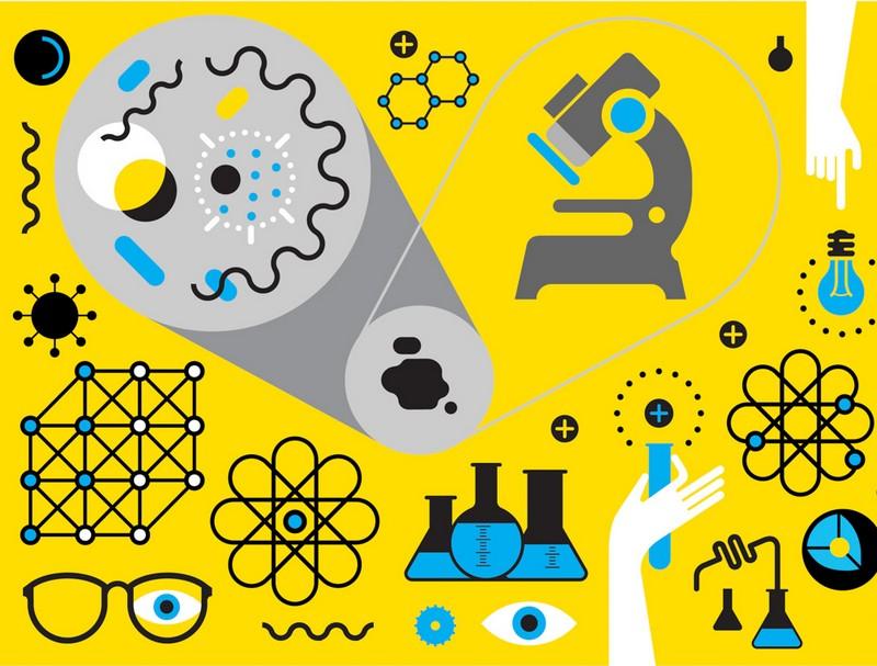 Ведущие медицинские и технические научные центры Петербурга создали кластер «Трансляционная медицина»