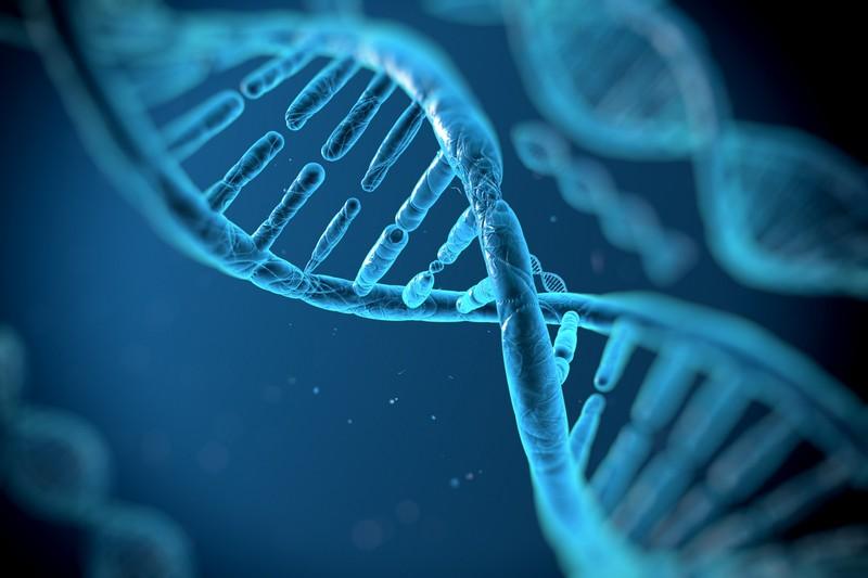 Ученые придумали новый способ сравнения и анализа метагеномов