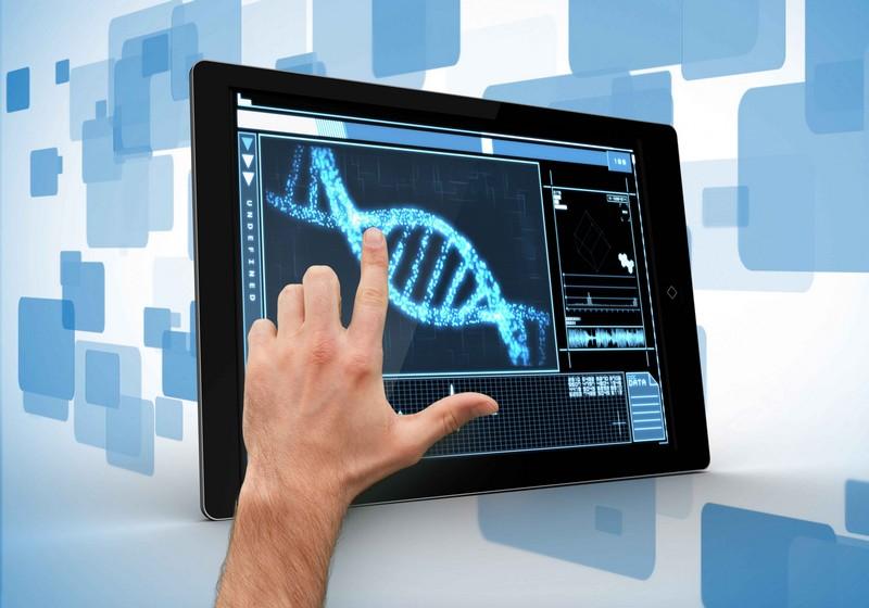 Ученые создали бесплатный веб-сервис для глубинного изучения работы клеток организма
