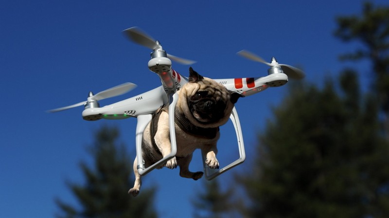 Drones At Work Delivering Pizza Searching For The Lost And Dismembering Snowmen