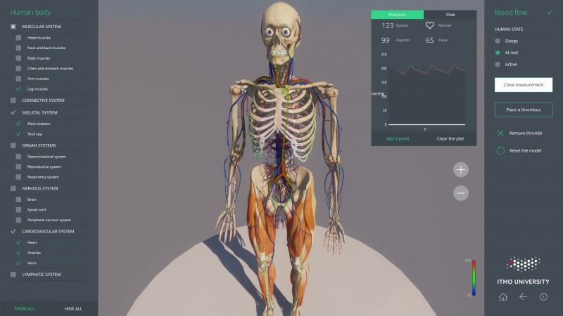 Telemedicine How Programmers Visualize Human Internals