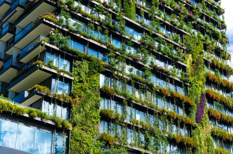 Зеленое строительство – практическое воплощение принципов устойчивого  развития