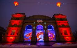 Высшая школа светового дизайна «выпустила» дракона в Александровском парке