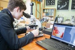 Ученые из Петербурга и Швейцарии создадут новый вид биодетекторов