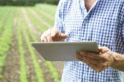 Сенсоры для сельского хозяйства: как с помощью науки сохранить урожай