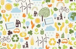 Сохраняя гармоничный мир для потомков: как реализовать экологические инициативы в университете