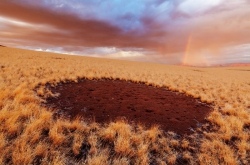 Research on Fairy Circles in Africa Will Benefit Agriculture
