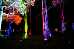"""Schrödinger's Paradox and Doctor Faustus' Lab: the Many Faces of """"Gatchina Light Nights"""""""