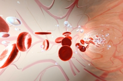 Researchers Investigate Correlation Between Blood Flow and Body Position
