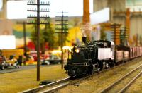 Things to Do in St. Petersburg: November 25-26
