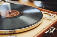 This Weekend in St. Petersburg: November 16-17, 2019