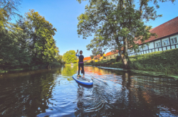 This Mostly Stay-at-Home Weekend in St. Petersburg: August 8-9, 2020